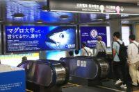 近鉄大阪難波駅から南海なんば駅のアクセスは?