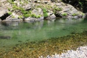 久多キャンプ場へ行ってきた! 大岩からの飛び込みができる川遊びスポット