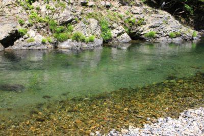 久多キャンプ場へ行ってきた! 大岩からの飛び込みができる川遊びスポット | ウェルの雑記ブログ